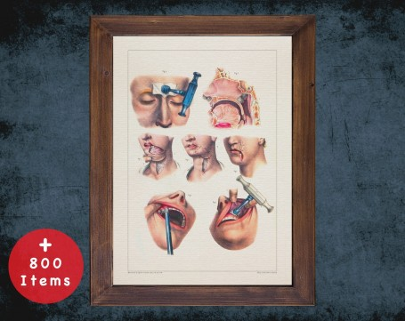 Anatomy art, RHINOPLASTY NASAL CAVITY, medical student gift, Plastic Surgeon and Plastic Surgery, doctor office decor
