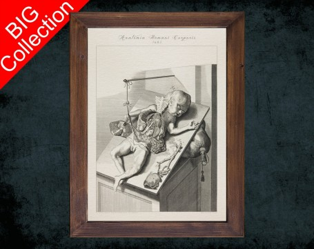 Human Anatomy, medical student gift,, doctor office decor, BABY DISSECTION AUTOPSY anatomical poster