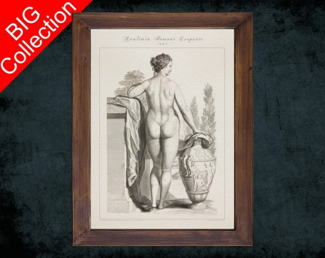 Human Anatomy, medical student gift,, doctor office decor, WOMEN BODY BACK anatomical poster