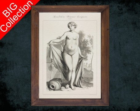 Human Anatomy, medical student gift,, doctor office decor, WOMEN BODY FRONT anatomical poster