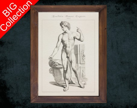 Human Anatomy, medical student gift,, doctor office decor, MEN BODY FRONT anatomical poster