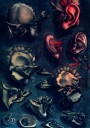 Medical art, vintage anatomy, curiosities oddities,  EAR BONES DISSECTION, medical student gift, doctor decoration