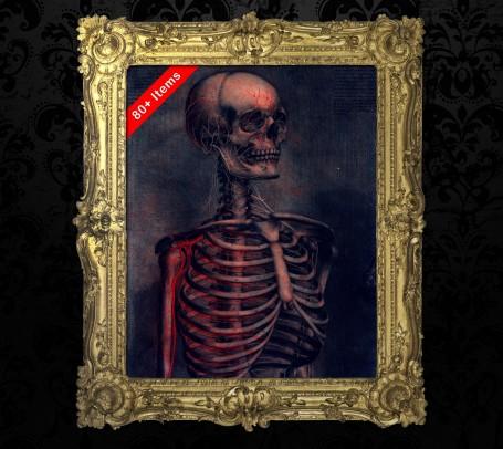 Medical art, vintage anatomy, curiosities oddities,  SKELETON SKULL BONES, medical student gift, doctor decoration