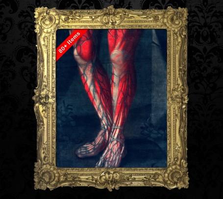 Medical art, vintage anatomy, curiosities oddities,  LEG KNEE FOOT, medical student gift, doctor decoration