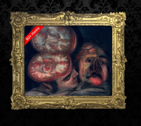 Medical art, vintage anatomy, curiosities oddities,  HEAD BRAIN CUT, medical student gift, doctor decoration