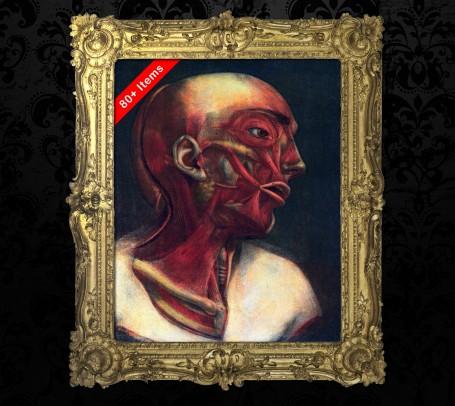 Medical art, vintage anatomy, curiosities oddities,  HEAD NECK JOWL, medical student gift, doctor decoration