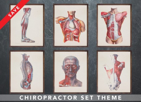 Anatomy art set CHIROPRACTOR Chiropractic Physiotherapist medical student gift for doctor anatomy graduate gift medical art huma