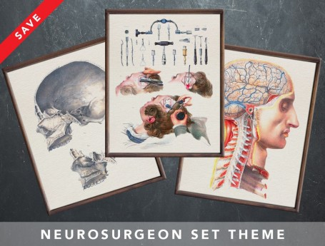 Anatomy art set NEUROSURGEON NEUROSURGERY medical student gift for doctor anatomy graduate gift medical art human biology
