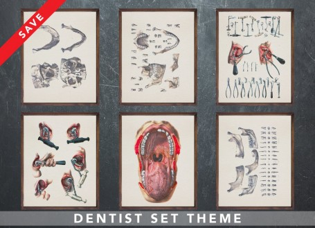 Anatomy art set DENTIST dental medical student gift for doctor anatomy graduate gift medical art human biology