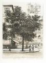 Paris wall art  MAISON FIESCHI lithograph french antique