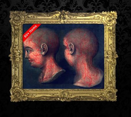 HEAD BLOOD VEIN